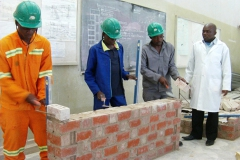 Bricklaying and Plastering
